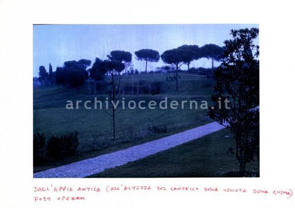 """Casale La Giostra: """"D'all'Appia Antica (all'altezza del cancello della tenuta della Giostra) - Post operam"""""""